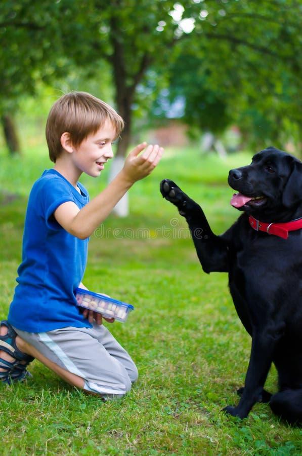 Chłopiec z psem fotografia royalty free