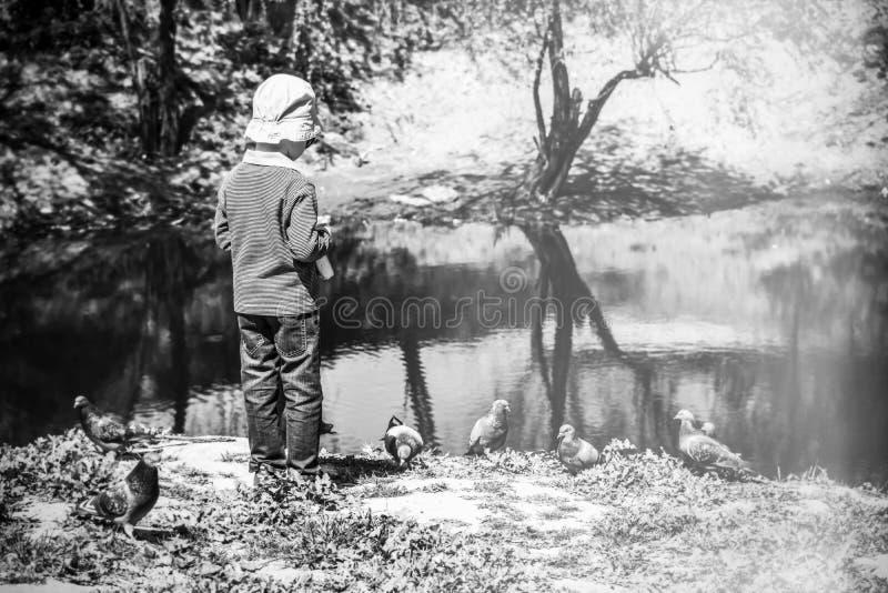Download Chłopiec przy jeziorem zdjęcie stock. Obraz złożonej z biały - 53777320