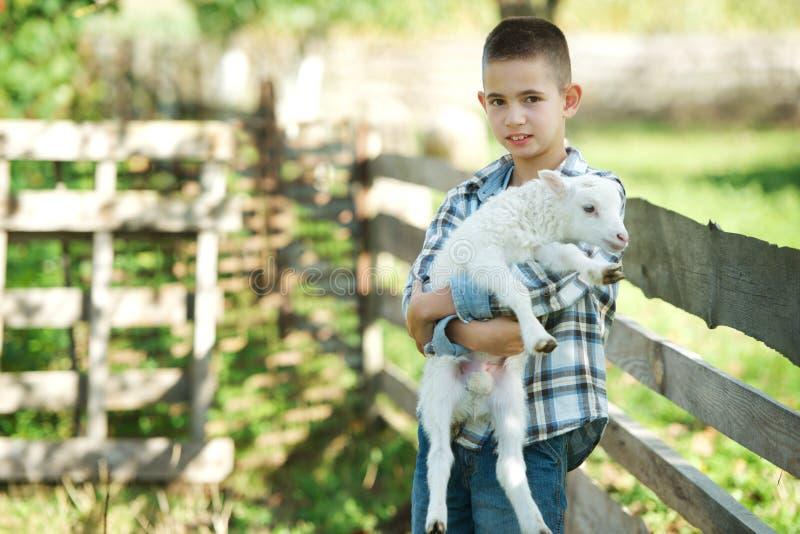Download Chłopiec Z Barankiem Na Gospodarstwie Rolnym Obraz Stock - Obraz złożonej z zwierzęta, ssak: 57669709