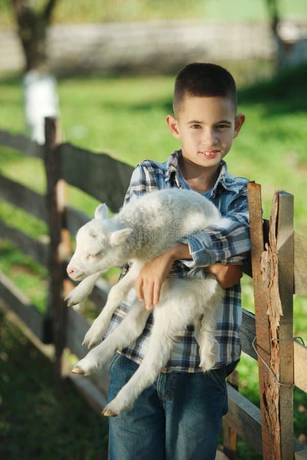 Download Chłopiec Z Barankiem Na Gospodarstwie Rolnym Zdjęcie Stock - Obraz złożonej z życie, uściśnięcie: 57670798