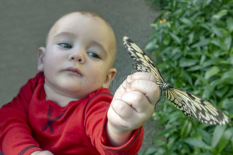 Ch?opiec z motylem fotografia royalty free