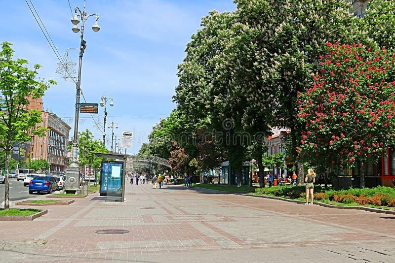 Ch?taignes et b?timent de floraison sur la rue de Khreshchatyk, Kiev, Ukraine image libre de droits