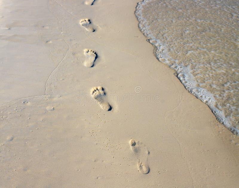 Chaîne aux pieds nus de promenade sur le sable blanc humide Photo de vue de plage Marques de pied sur la plage photo stock