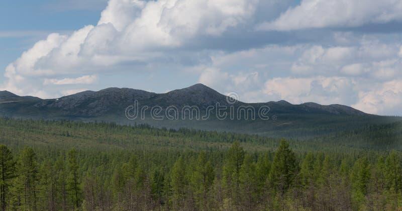 Chaîne de montagne dans Yakutia du sud, Russie images libres de droits