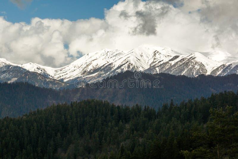 Chaîne de montagne de parc national de Borjomi images stock