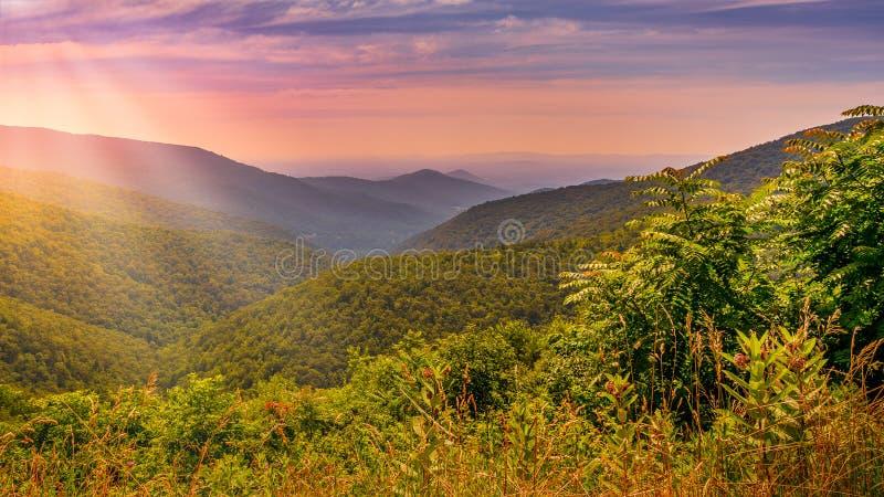 Chaîne de montagne de parc national de Shenandoah photos libres de droits