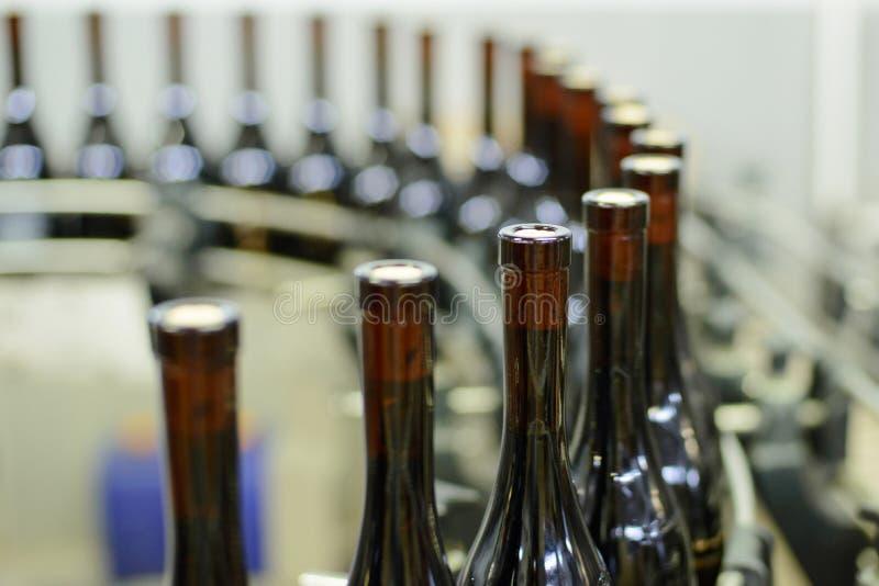 Chaîne de production d'établissement vinicole photographie stock libre de droits