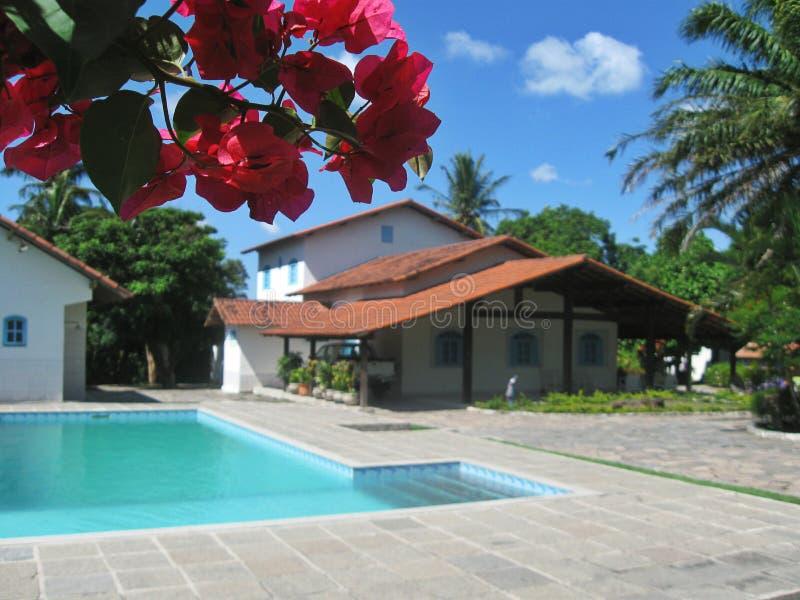 Chałupa dom w Brazil_01 obrazy royalty free