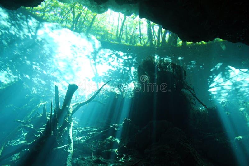 Chac Mool Cenote photographie stock libre de droits