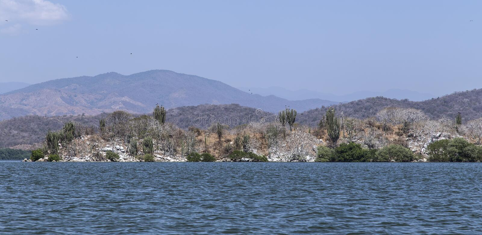 Chacahua Lagoon in Oaxaca, Mexico. Where the freshwater delta meets the pacific ocean where many water birds have found a breeding ground and resting place royalty free stock images