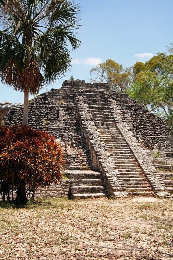Download Chacchoben Ruine stockfoto. Bild von pyramide, maya, opfer - 852754