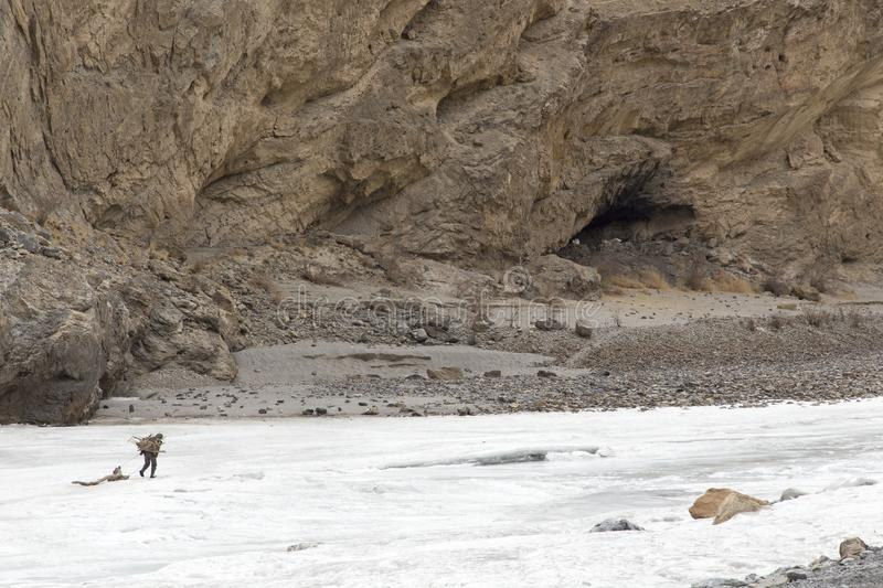 Chadar trek - adventure over frozen Zanskar river. Dragging firewood on ice. Fuel for cooking and for keeping warm at night. Chadar trek is one of the most royalty free stock photography