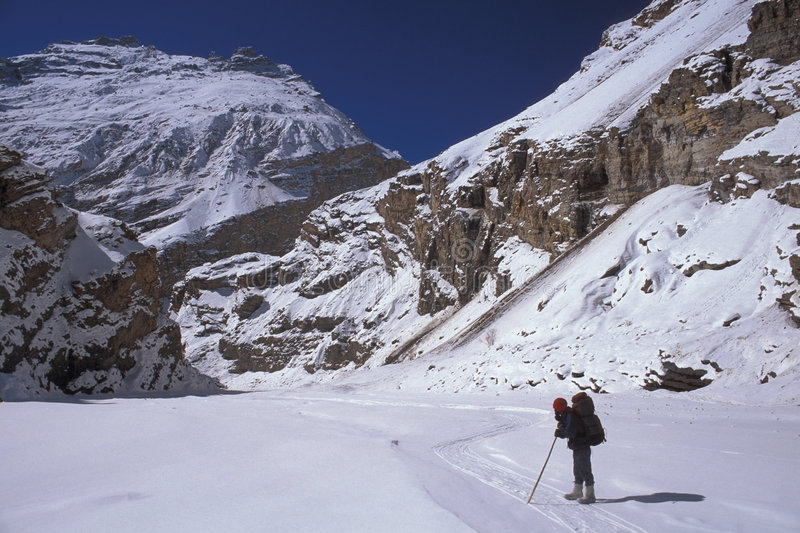 Chaddar hiker. Hiker on the frozen Zanskar river (Chaddar), Ladakh, India royalty free stock photo