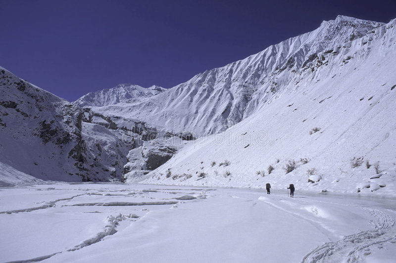 Chaddar hikers. Hiker on the frozen Zanskar river (Chaddar), Ladakh, India stock photography