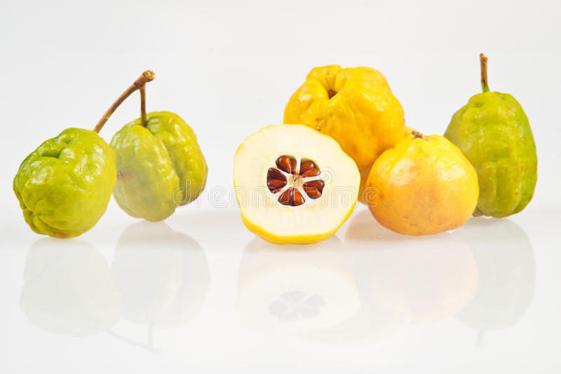 Chaenomeles japonica. Japanese Quince green and yellow fruits on a white background. Chaenomeles japonica royalty free stock photography