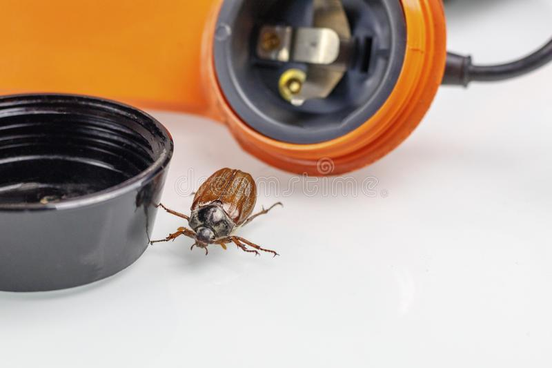 Chafer. retro phone. He gets out of the speaker. phone listening concept. Tube buttons disk wiretapping recording shadowing bug beetle macro large nature royalty free stock photography