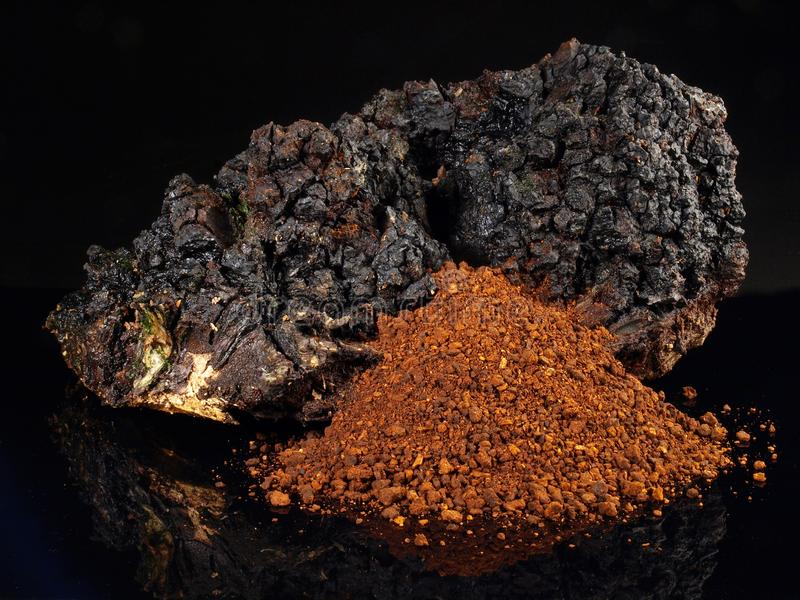Chagapaddestoel - Gezonde Voeding stock afbeeldingen