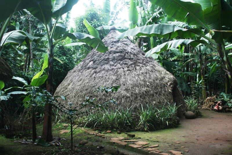 Chagga-Hütte stockbild