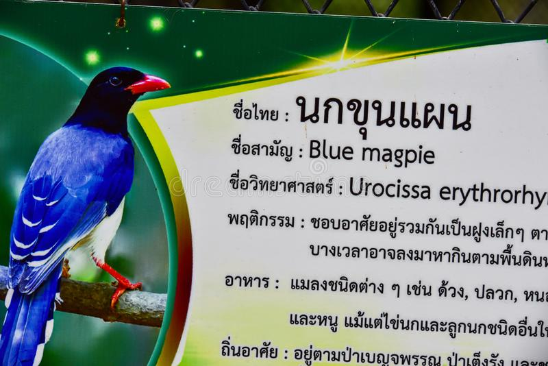 Chai nat Thailand December 26 2019 see birds at Chai NAT Bird Park is a place of chainat province. Bird cage is the biggest in. Asia, covering an area of 26 royalty free stock images