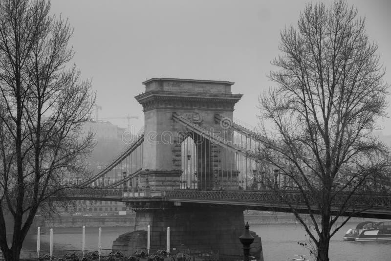 Chain bro på den dimmiga dagen ovanför flodDonauen i Budapest royaltyfri bild