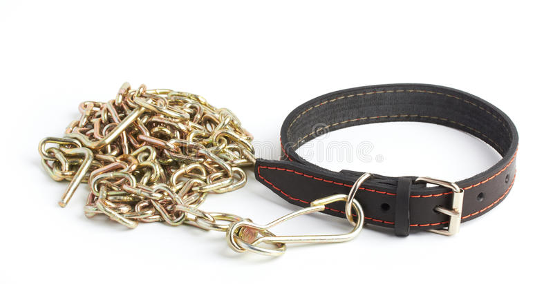 Download Chain and collar stock image. Image of security, black - 26285349