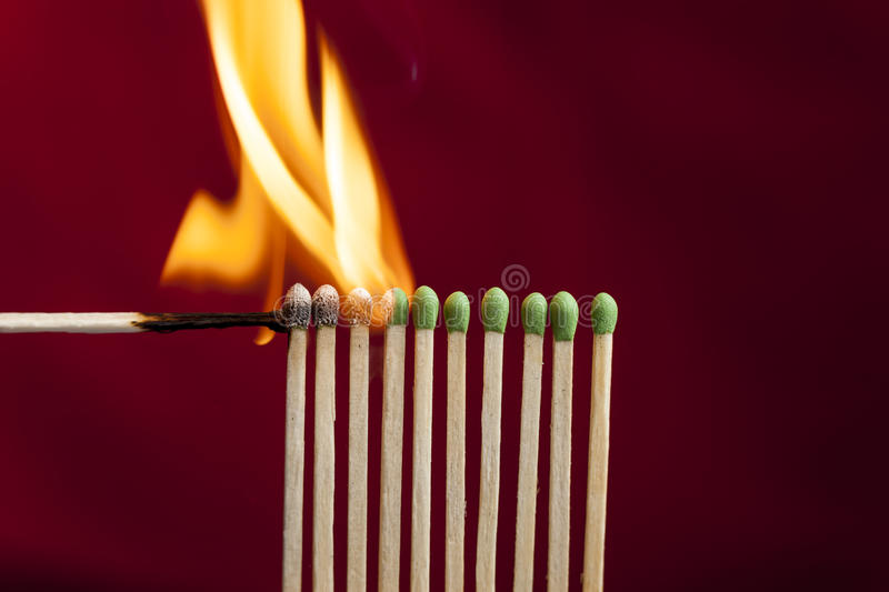 Chain reaction in matches. stock image