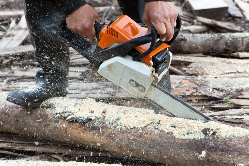 Download Chain Saw Stock Image - Image: 20967181