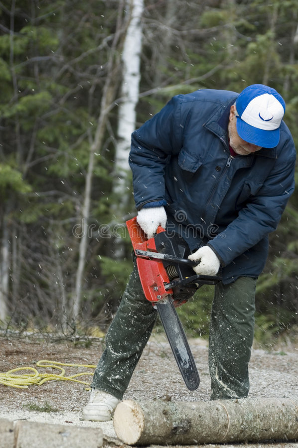 Download Chain saw stock photo. Image of gloves, manly, branch, people - 329796