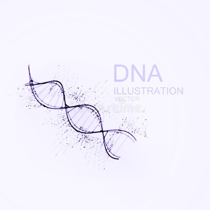 Chain vektorillustration för DNA stock illustrationer