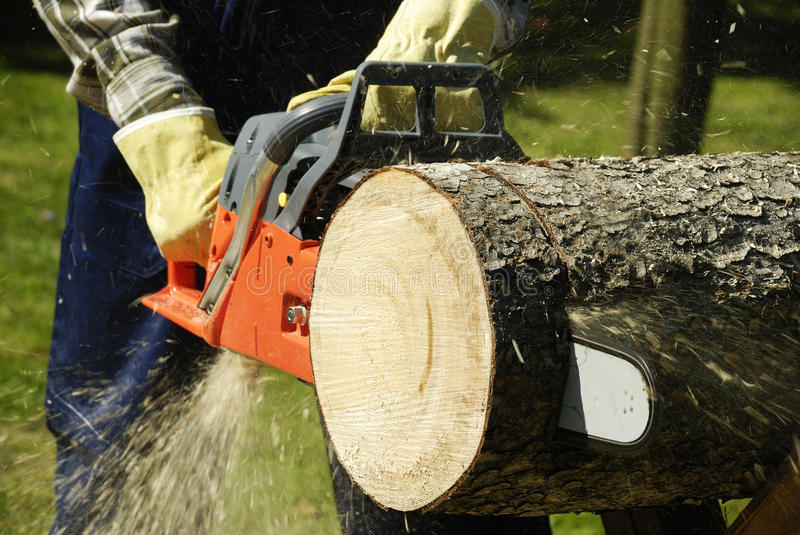 The chainsaw. Cutting the log of wood royalty free stock photo