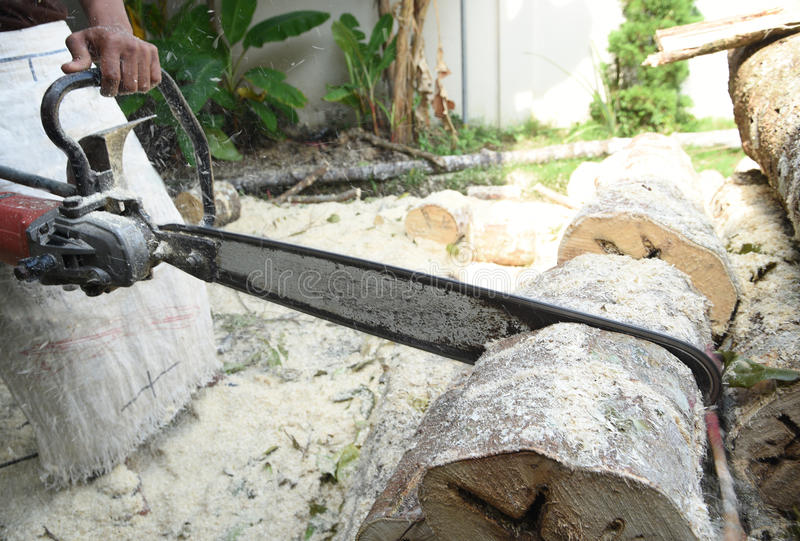 chainsaw fotografie stock