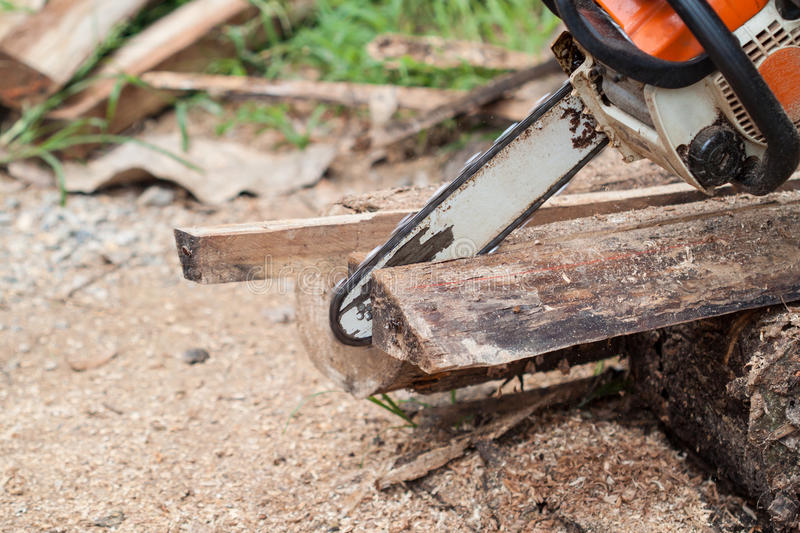 Chainsaw. Blade cutting the log of wood royalty free stock image