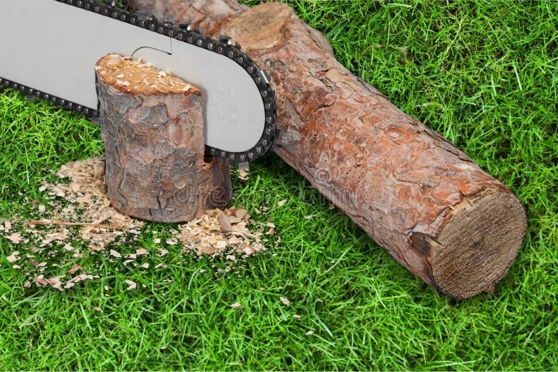 Chainsaw. Lumberjack Gardening Equipment Wood Work Tool Lumber Industry Cutting stock photography