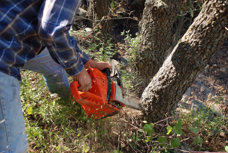 Download Chainsaw and saw dust stock image. Image of helmet, action - 6233883