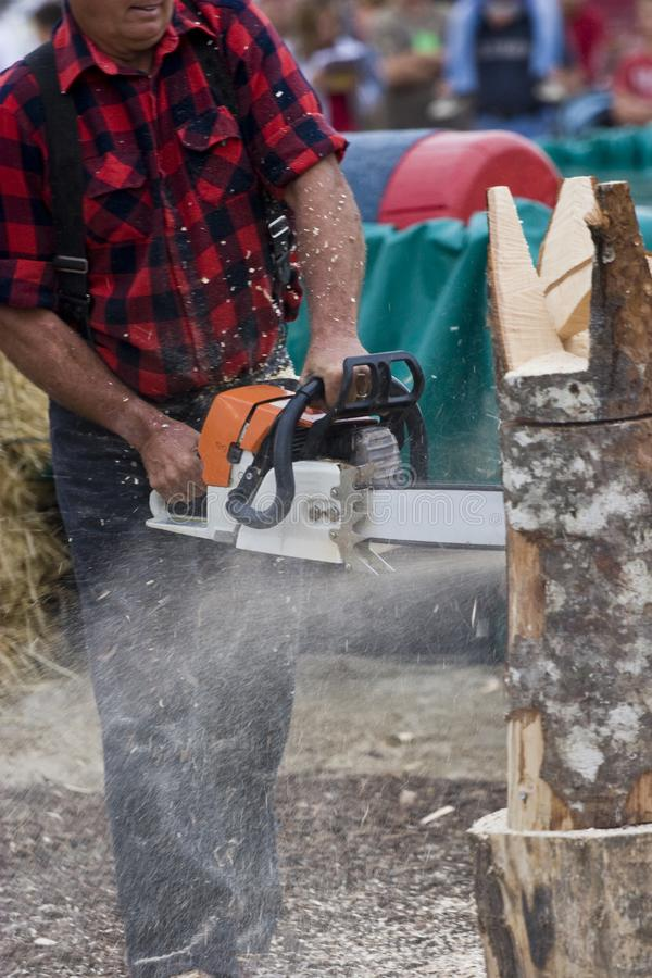 Chainsaw Sculptor carving log sculpture royalty free stock photography