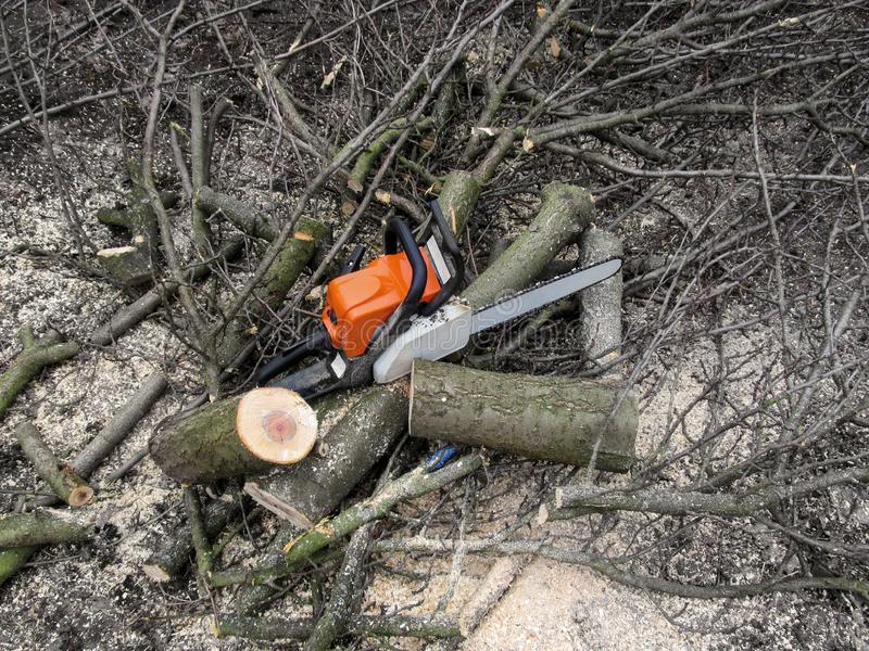 Chainsaw stands among the new stumps of cutted wood. Chainsaw, twigs, sawdust and pieces of a tree trunk  - a beautiful background. With a copy space stock photos