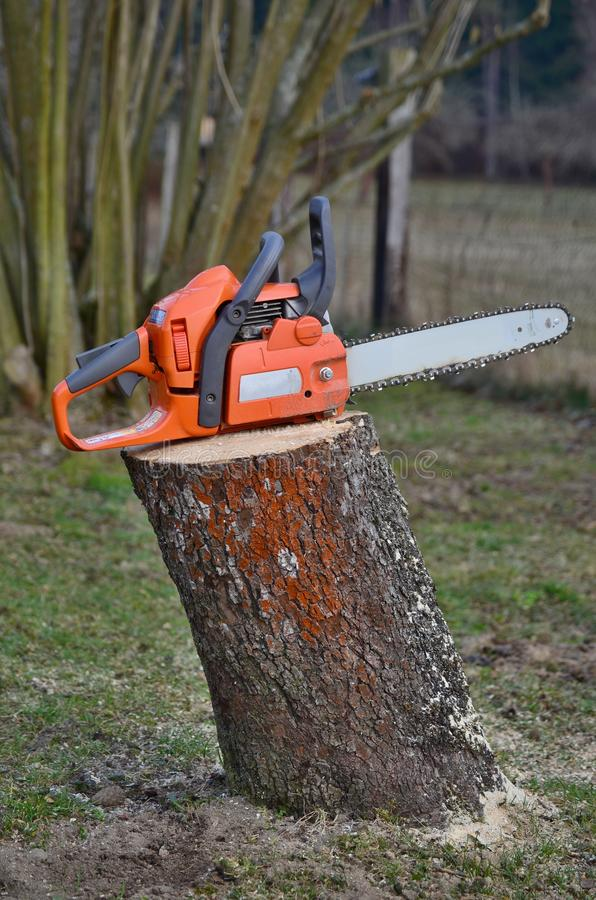 Download Chainsaw on a stump stock image. Image of chainsaw, gasoline - 51806315