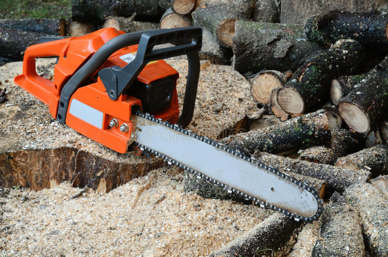 Chainsaw and wood. Chainsaw and cut wood on the ground in the forest stock photo