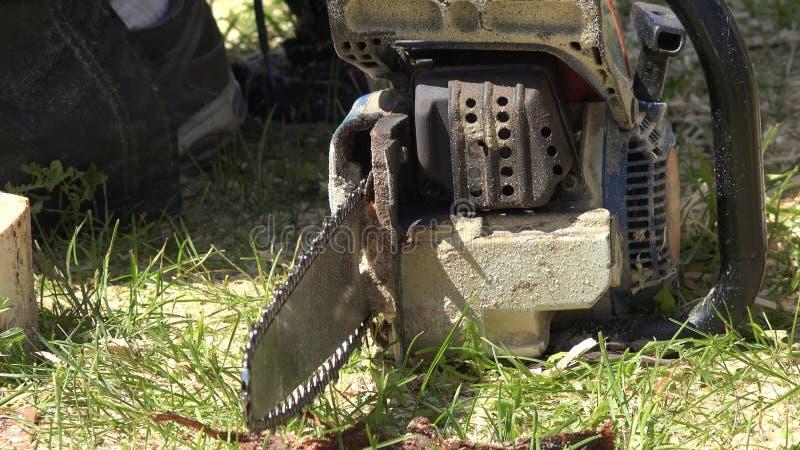 Chainsaw, Wood Cutting акции видеоматериалы