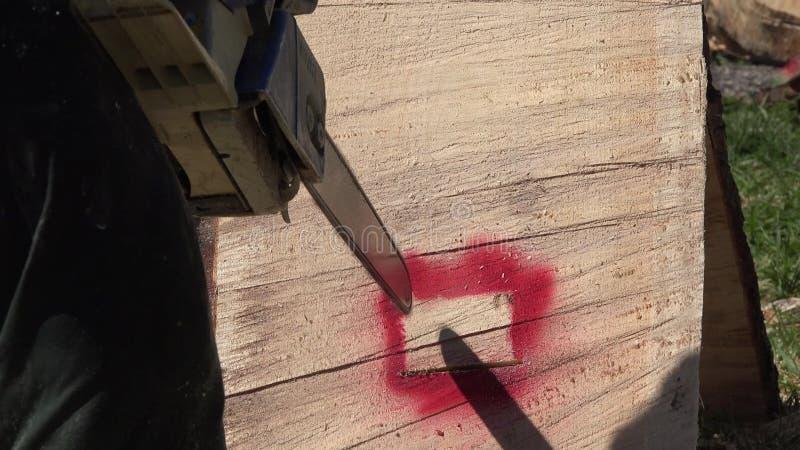 Chainsaw, Wood Cutting видеоматериал