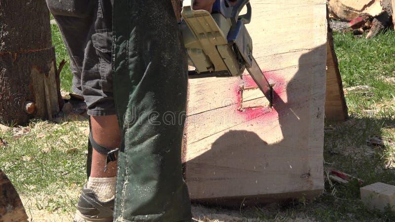 Chainsaw, Wood Cutting сток-видео
