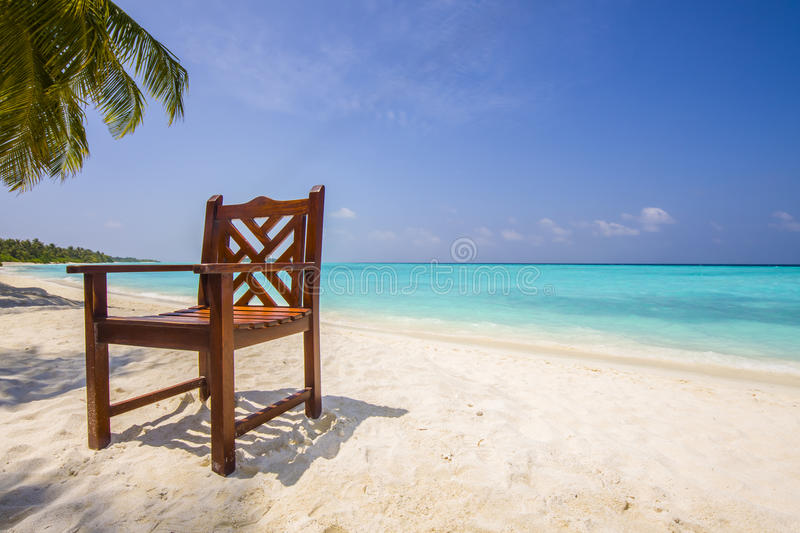 Download Chair at the beach stock photo. Image of nobody, shade - 24316516