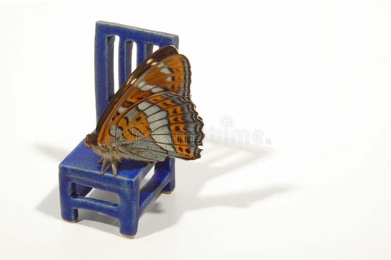 Chair with butterfly 2 royalty free stock photography