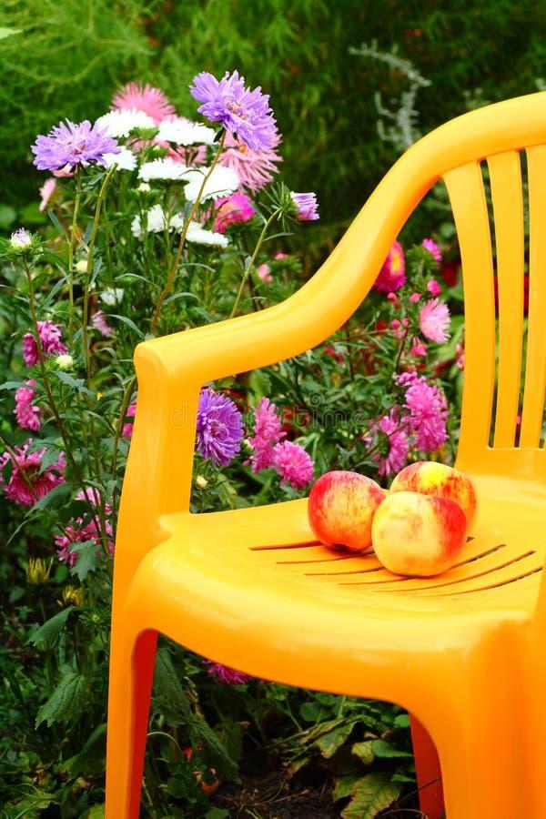 Download Chair in the garden stock image. Image of verdure, aster - 12128801