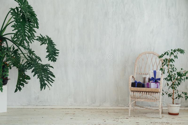 White chair with gifts with home plants in the interior of a vintage gray room. Chair with gifts with home plants in the interior of a vintage gray room stock images