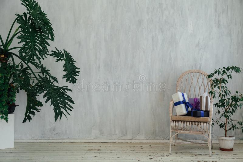 White chair with gifts with home plants in the interior of a vintage gray room. Chair with gifts with home plants in the interior of a vintage gray room royalty free stock images