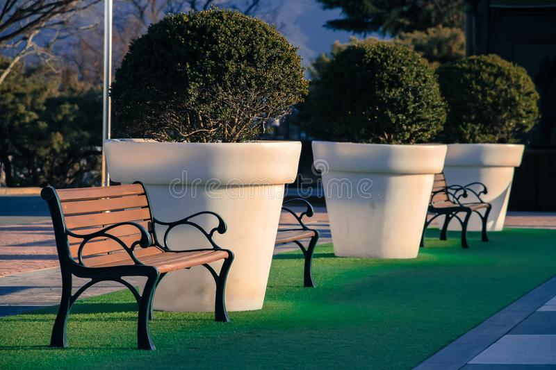 The chair is located on a green grass with a potted plant next t stock image
