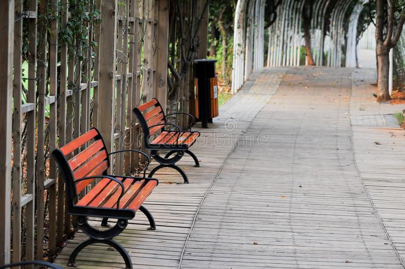 A chair in the park. ,Unattended,A tidy path with a fence stock photos