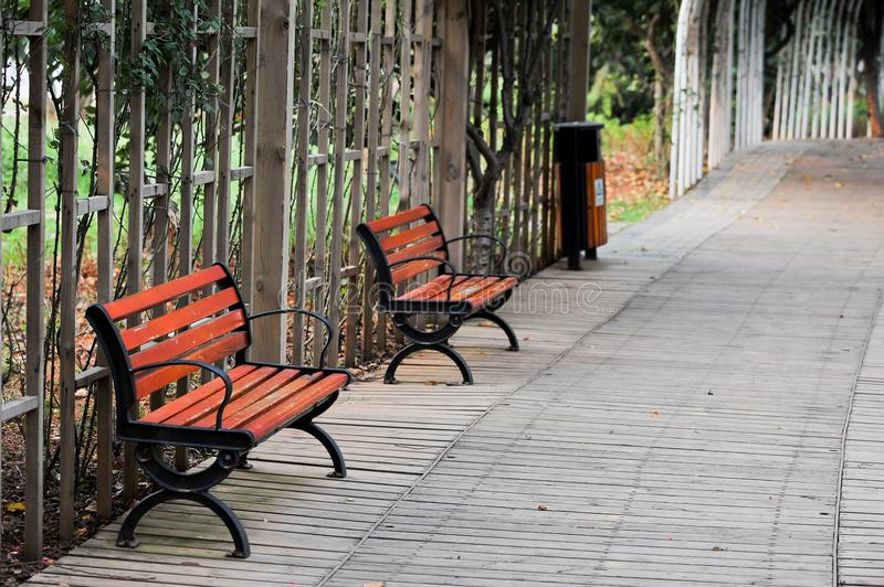 A chair in the park. ,Unattended,A tidy path with a fence royalty free stock photo