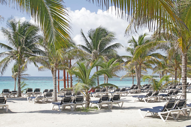 Download Chairs on Beach stock image. Image of destination, maya - 16990743